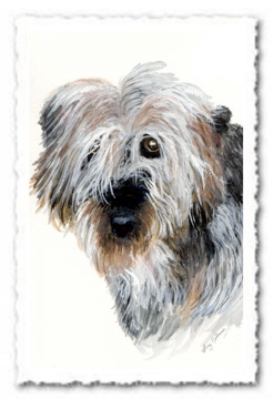 Dog - Helena Castro Pet Portrait Painting