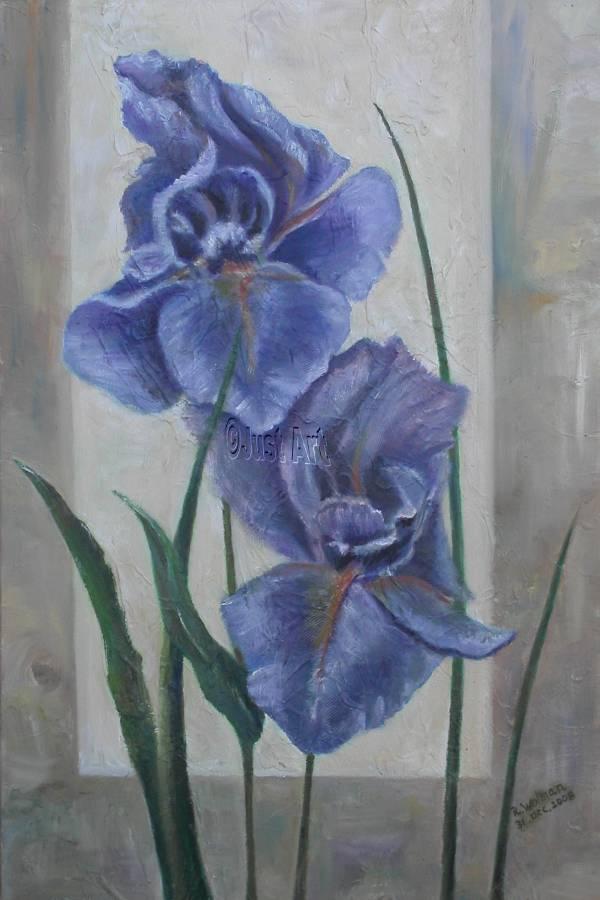 Blue Iris - Rachel Wolman Art