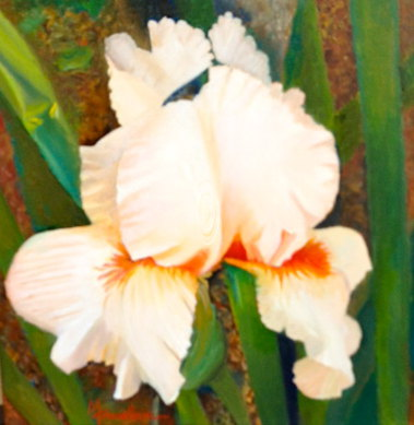 Mary Truelove White Iris Oil Texas Art