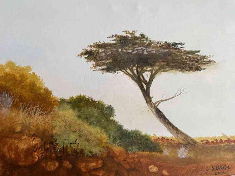 Pataqonia Wind Blowing Tree Landscape - Saul Sokol