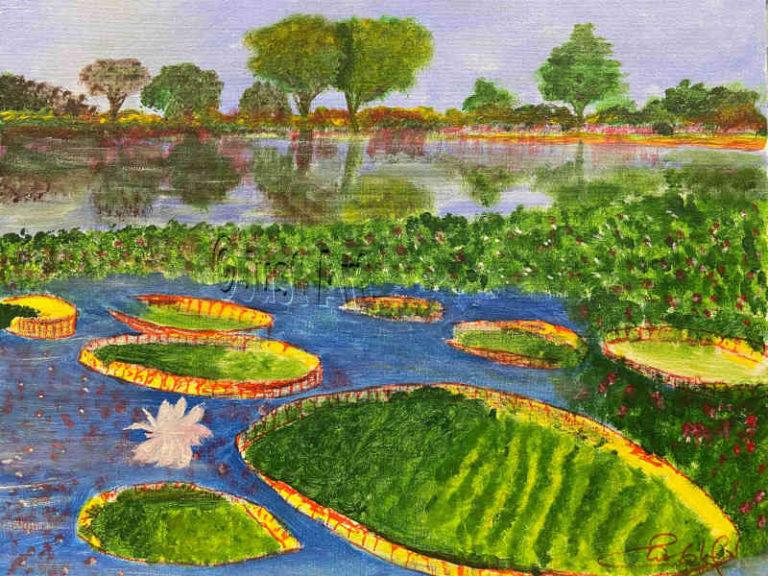 Round Lili tubs in Lake - Saul Sokol