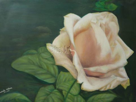 White Rose - Rachel Wolman Art