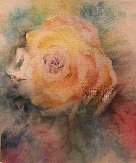 Yellow Rose - Edna Goldstein Art