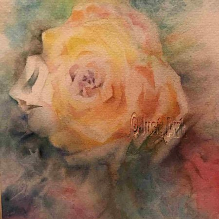 Yellow Rose - Edna Goldstein Art